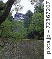 2014年の熊本城(平櫓付近から見た天守) 72367207