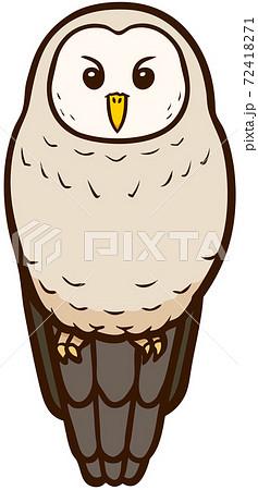 正面顔のフクロウのイラスト 72418271