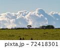 納沙布の草原の向こうに積乱雲が見える風景 72418301