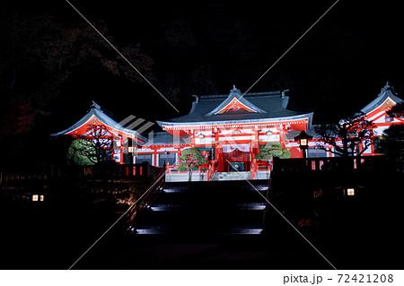 足利市 足利織姫神社のライトアップ 72421208