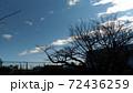 こじま花の会花畑の冬の青空と白い雲 72436259