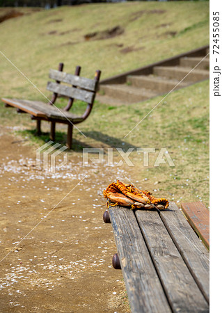 公園のベンチ 72455085