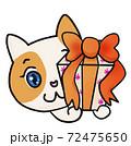 プレゼントを渡すねこちゃん 72475650