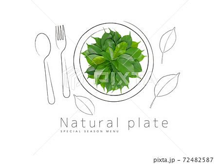 お皿の上にある緑の葉 72482587