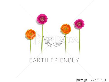 お花畑でハンモックで昼寝 72482601