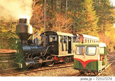 赤沢森林鉄道 ボールドウィン蒸気機関車とかわいいモーターカー(木曽森林鉄道) 72517270