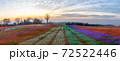 マザー牧場 イルミネーション 72522446