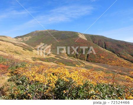 草紅葉がひしめく紅葉期の月山の山腹 72524466
