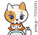 手洗いねこちゃん 72532051