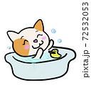 入浴中ねこちゃん 72532053