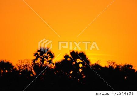 ザンベジ川サンセットクルーズの夕焼け 72544303
