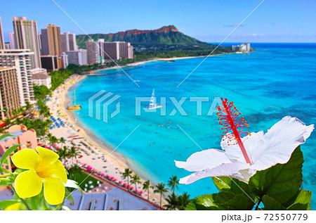 白と黄色の花とワイキキビーチの背景 72550779