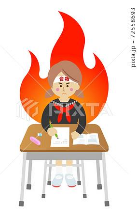 試験勉強を必死に頑張る学生のイラストイメージ 72558693