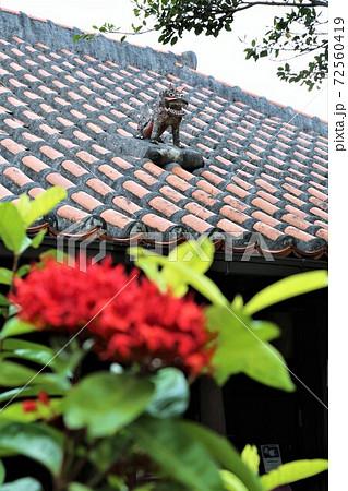 琉球瓦の屋根とシーサー 72560419