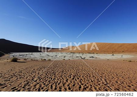 ナミブ砂漠 デッドフレイ 72560462