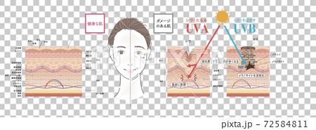 皮膚 斑 老化斑 72584811