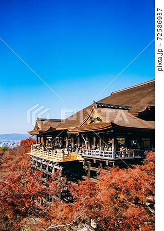 平成の大改修が終わった京都の清水寺:清水の舞台 72586937