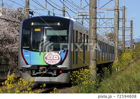 桜並木を行く、西武新宿線40050系 72594608