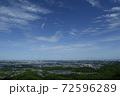 東京の空(2020年) 72596289