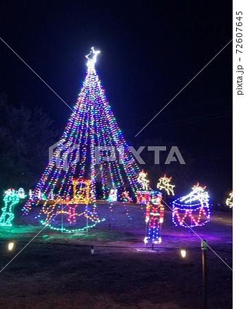 大きなツリーとクリスマスイルミネーション 72607645