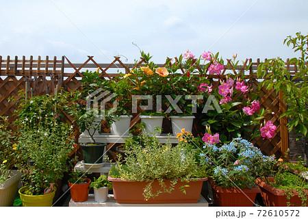 ルーフバルコニーをお花いっぱいフラワーガーデンに 屋外リビング 72610572