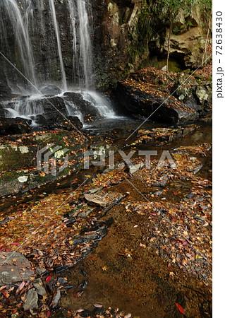 徳島三好市黒澤湿原 秋のたびの尻滝 72638430