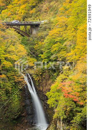 新潟県妙高市 紅葉の大滝(不動滝) 72691949