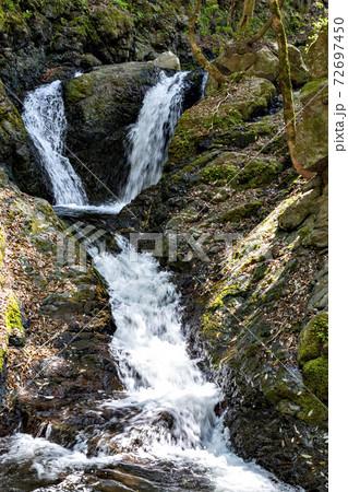 兵庫県養父市にある天滝への途上にある夫婦滝 72697450