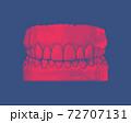 Red vintage human tooth and gum illustration on blue BG 72707131