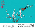 vector of magpie landing on branch of plum tree as symbol of good luck 72711176
