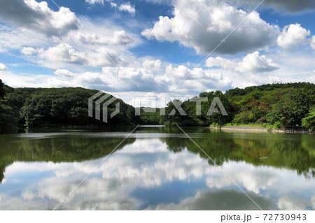 たくさんの雲と八丁湖 (埼玉県・吉見町) 72730943