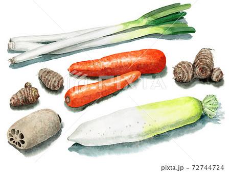 アナログ水彩根菜類5種類 72744724