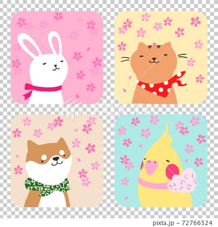 春天的兔子,貓,狗和鳥的插圖 72766524