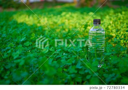 緑の植物に囲まれた場所に置かれた水の入ったプラスチックボトル 72780334