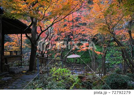 12月 鎌倉1112茶庭・庭園の紅葉・一条恵観山 72792279