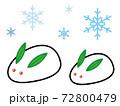 雪うさぎイラスト 72800479