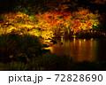 【香川県 高松市】秋の夜間ライトアップの栗林公園 日本庭園 72828690