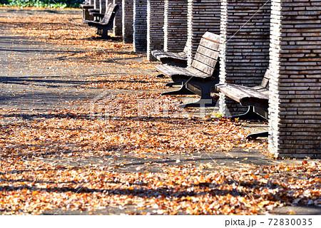 枯れ葉の上に長い影が映りこむ公園の休憩所 72830035