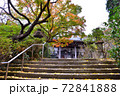鎌倉古寺の紅葉と階段に積るイチョウの葉 72841888