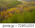 スペインの自然 中部 72851253