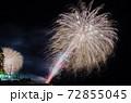 伊豆稲取の花火演舞 72855045