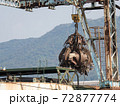 【産業】巨大なクレーンでスクラップを掴む様子 ごみ 産業廃棄物 72877774