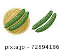 きゅうりのイラスト 72894186