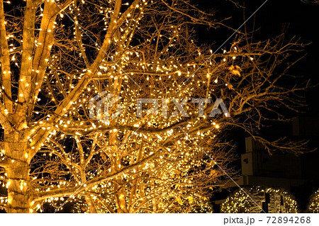 金色に染まるクリスマス・イルミネーション 72894268