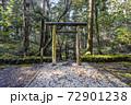 苔むした平泉寺白山神社 御手洗池(福井県勝山市) 72901238