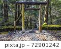 苔むした平泉寺白山神社 御手洗池(福井県勝山市) 72901242
