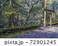 苔むした平泉寺白山神社 御手洗池(福井県勝山市) 72901245