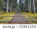 苔むした平泉寺白山神社 参道(福井県勝山市) 72901254