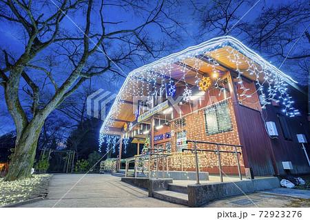 船岡城址公園のイルミネーション Shibata Fantasy Illumination 2020  72923276