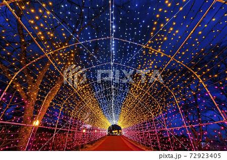 船岡城址公園のイルミネーション Shibata Fantasy Illumination 2020  72923405